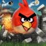 Angry Birds és társai: Mi a siker titka?